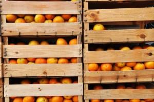 Pomarancze---luksus-w-PRL